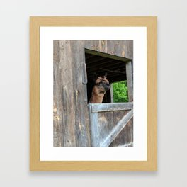 With the Wind in My Hair Framed Art Print