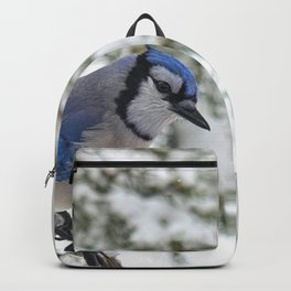 Beautiful Blue Jay Backpack