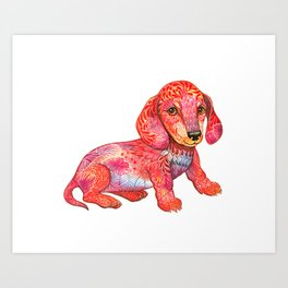 Mini Dachshund  Art Print