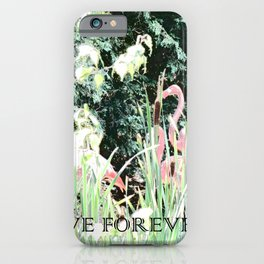 Flamingos Love Forever Flamingo Flamenco Tango Dance iPhone Case