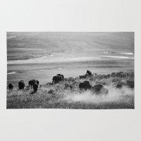 buffalo Area & Throw Rugs featuring BUFFALO by Eliesa Johnson