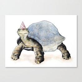 Tortoise Illustrational  Canvas Print