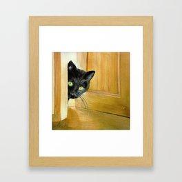 Curious Cat* Framed Art Print