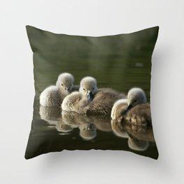MUTE SWAN CYGNET TRIO Throw Pillow