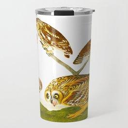 Burrowing Owl John James Audubon Scientific Bird Illustration Travel Mug