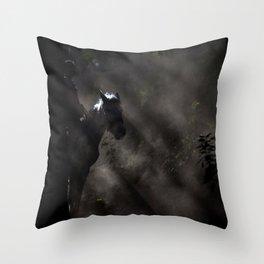 Light Rider Throw Pillow