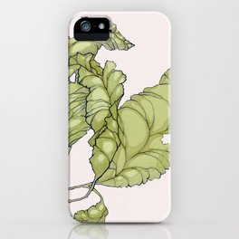 Hickory Tussock iPhone Case