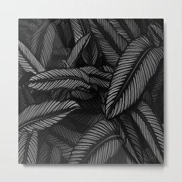 Night Tropic 5BW Metal Print