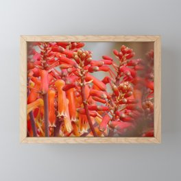 Orange Flower Buds Framed Mini Art Print
