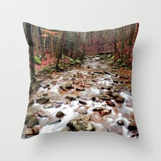 Panther Branch Trail Head Throw Pillow
