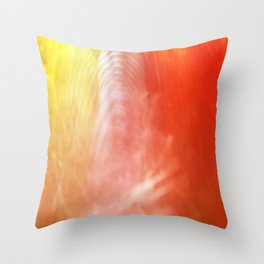 reflection of chihuly Throw Pillow