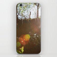 Lee Wood iPhone & iPod Skin