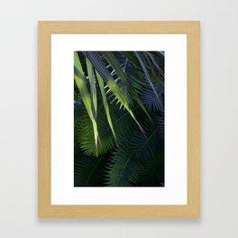 Tropical palms Framed Art Print
