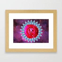 Rosa stella Framed Art Print