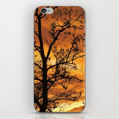 Universal iPhone & iPod Skin