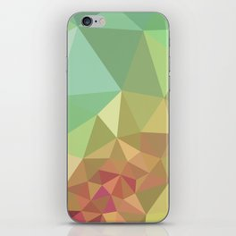 Courting Summer iPhone Skin