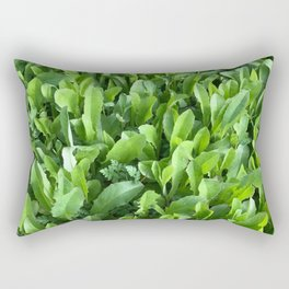 Sprung Rectangular Pillow