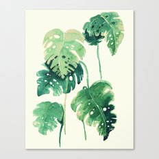 tropical nature s Canvas Print