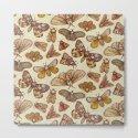 Moth Pattern by kateoharaillustration