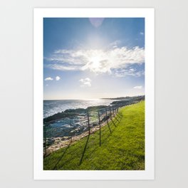 Irish landscape Art Print