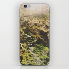 Mossy Creek iPhone & iPod Skin
