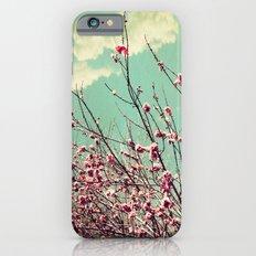 Pink Lapacho Tree iPhone 6s Slim Case