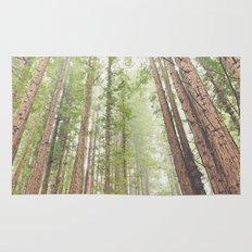 Giant Redwoods Rug