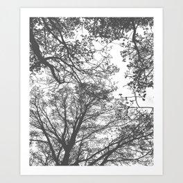 Grey Trees Abstract Art Print