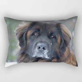 Brown Eyes Rectangular Pillow