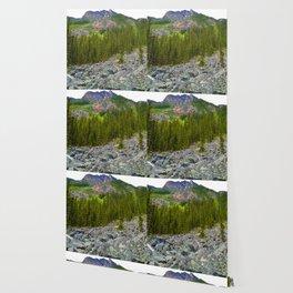Geraldine Lakes Hike in Jasper National Park, Canada Wallpaper