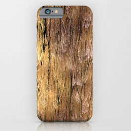 Grannys Hut - Structure 3A iPhone Case