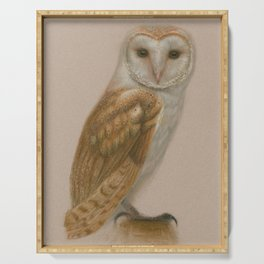 American Barn Owl Serving Tray