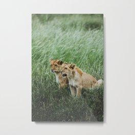 Serengeti National Park, Tanzania II Metal Print