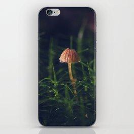 Polytrichum commune (moss) and mushroom (galerina marginata). Bonus: bug iPhone Skin