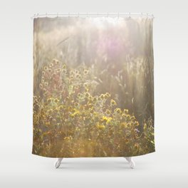 Evening is coming to Estes Park Shower Curtain