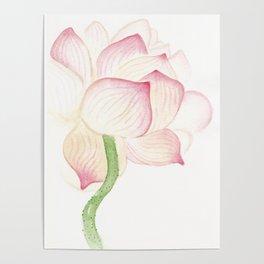 Padma Lotus Poster