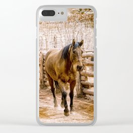 Stampede Clear iPhone Case