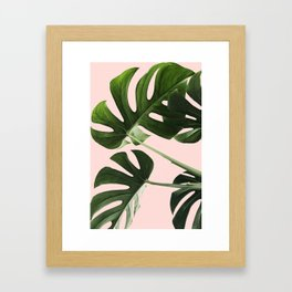 Monstera x Pink Framed Art Print