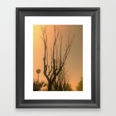Spiritual trees Framed Art Print