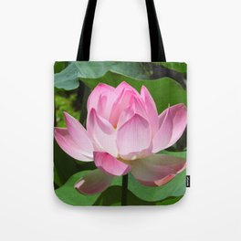 Pink Lotus Bloom Tote Bag