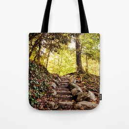 Rock Stairway Cades Cove Tennessee by Alli Gunter Photography Tote Bag