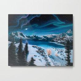 Polar Lights Metal Print