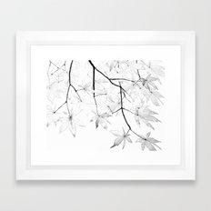 black and white maple leaves  Framed Art Print