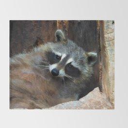 Raccoon Reclining Wildlife Photo Art Throw Blanket