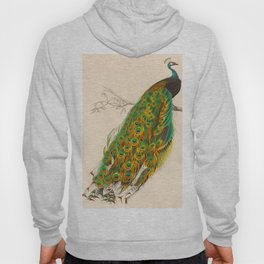 Charles d'Orbigny - Dictionnaire d'histoire naturelle - 1849 Beautiful Colorful Indian Peacock Hoody