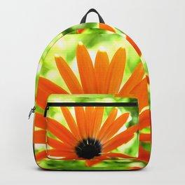 Solar orange daisy flower Backpack