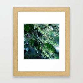 Leaves in Morning Dew Framed Art Print