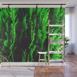 closeup green leaf texture abstract background Wall Mural