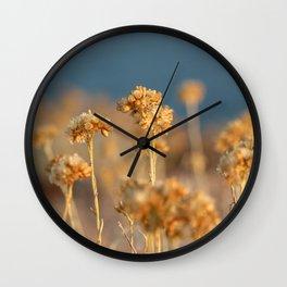 Helichrysum Italicum Immortal Flowers Wall Clock