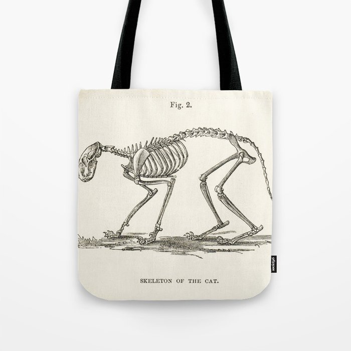Illustration Of A Cat Skeleton Anatomy Medical Bones Tote Bag